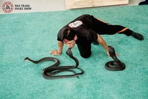 Kết quả hình ảnh cho xiếc rắn nha trang